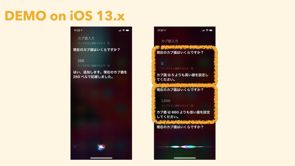 DEMO on iOS 13.x