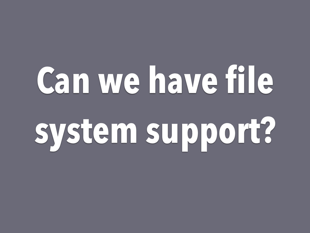 Can we have file system support?