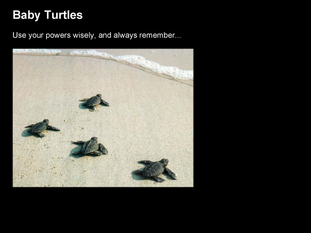 Baby Turtles Use your powers wisely, and always...