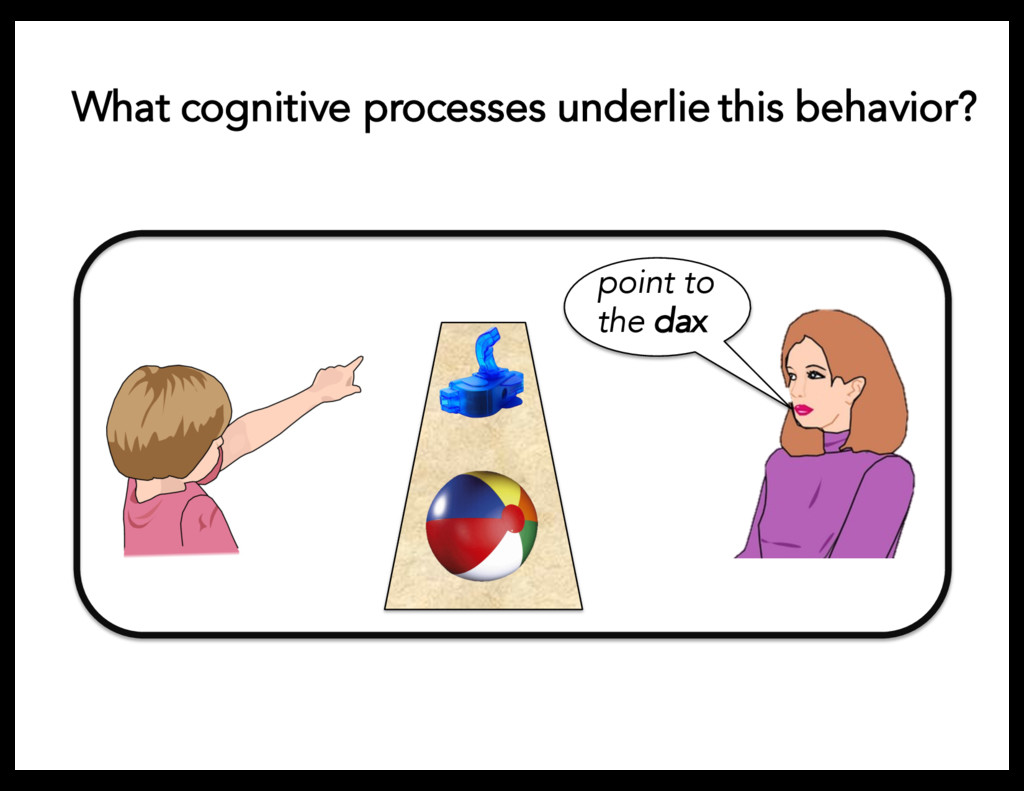 point to the dax What cognitive processes under...