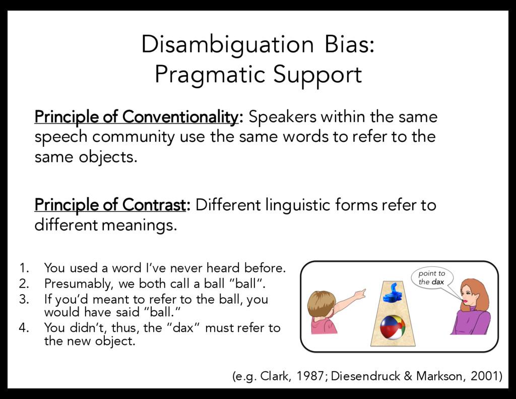 Disambiguation Bias: Pragmatic Support Principl...