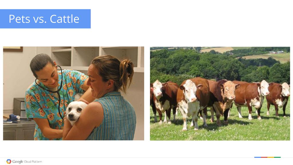 Google confidential │ Do not distribute Pets vs...