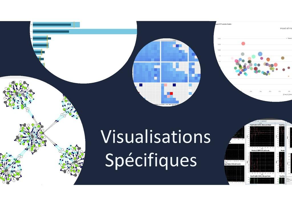 Visualisations Spécifiques