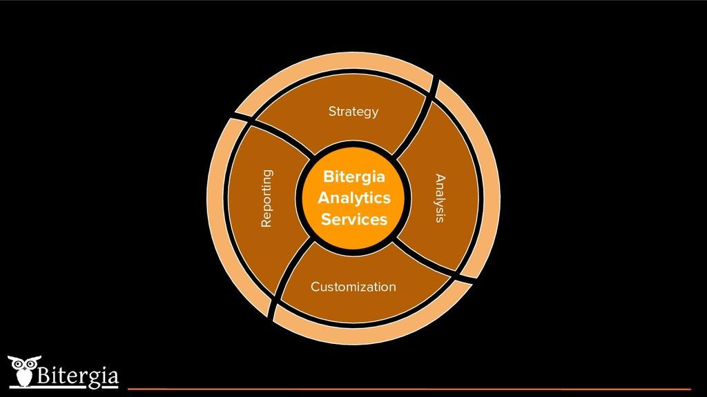 Reporting Customization Analysis Strategy Biter...