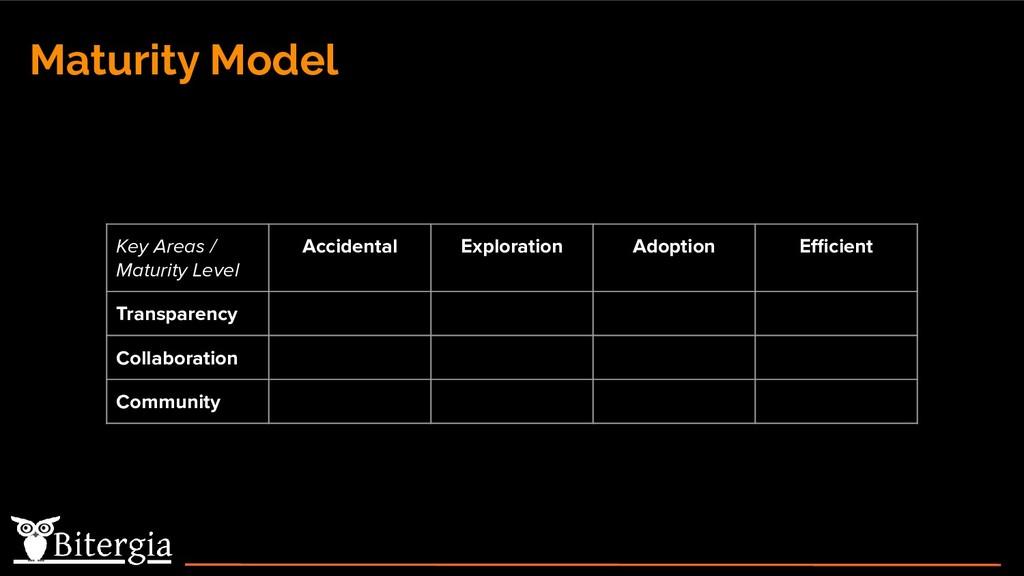 Maturity Model Key Areas / Maturity Level Accid...