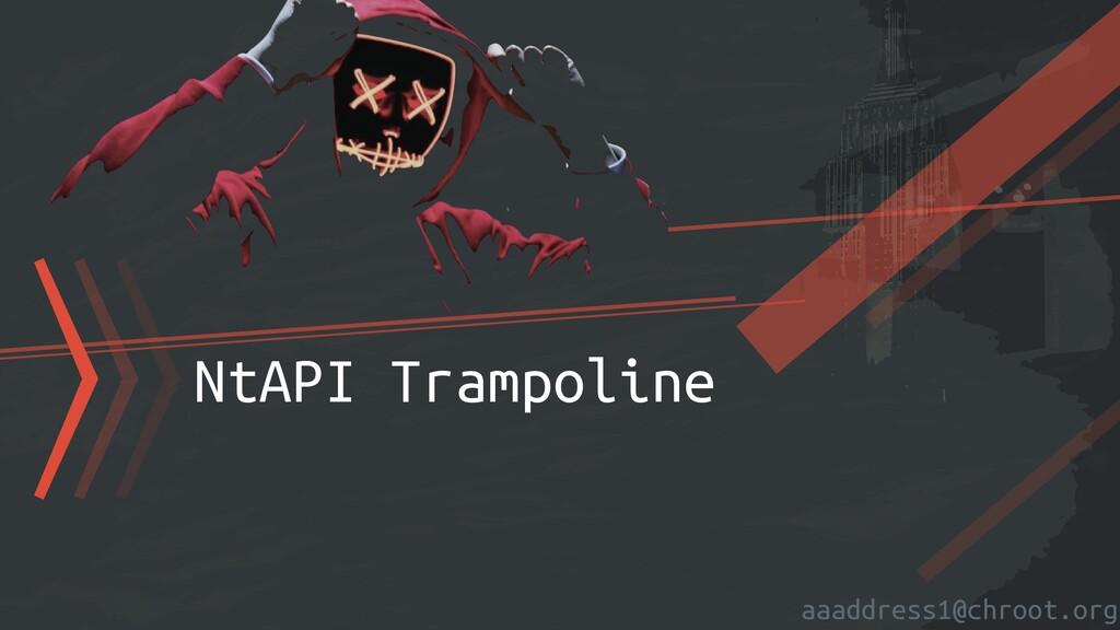 aaaddress1@chroot.org 〉〉〉NtAPI Trampoline