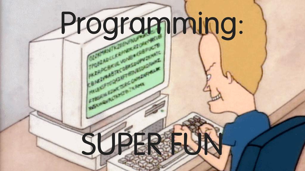 Programming: SUPER FUN