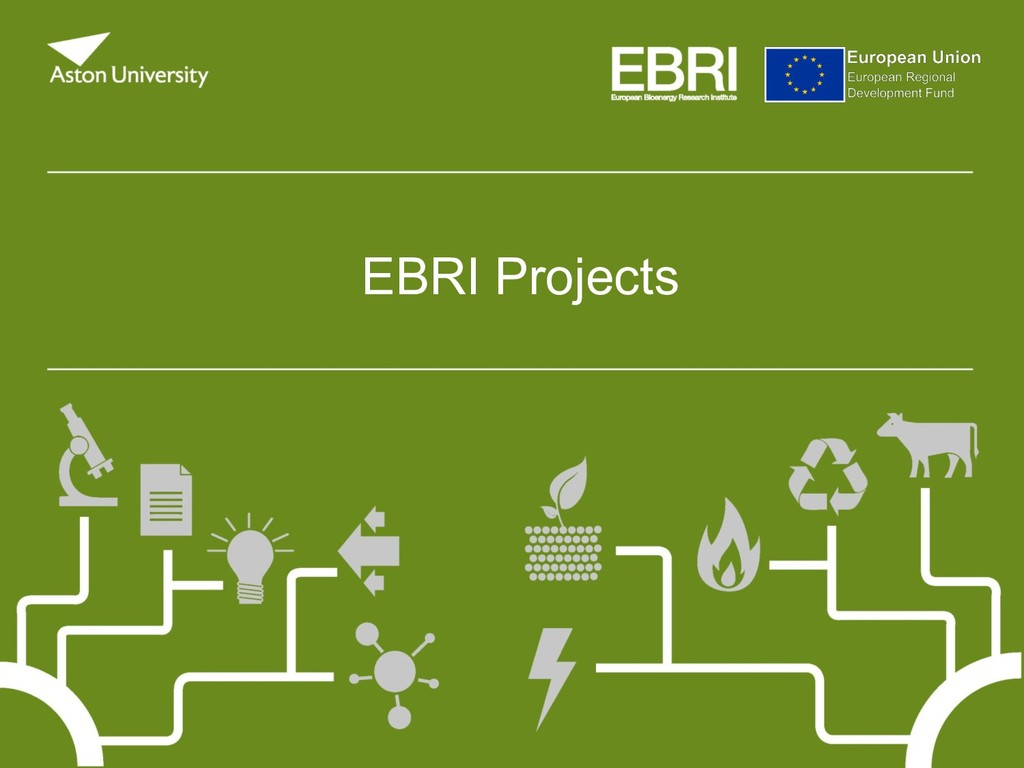 EBRI Projects
