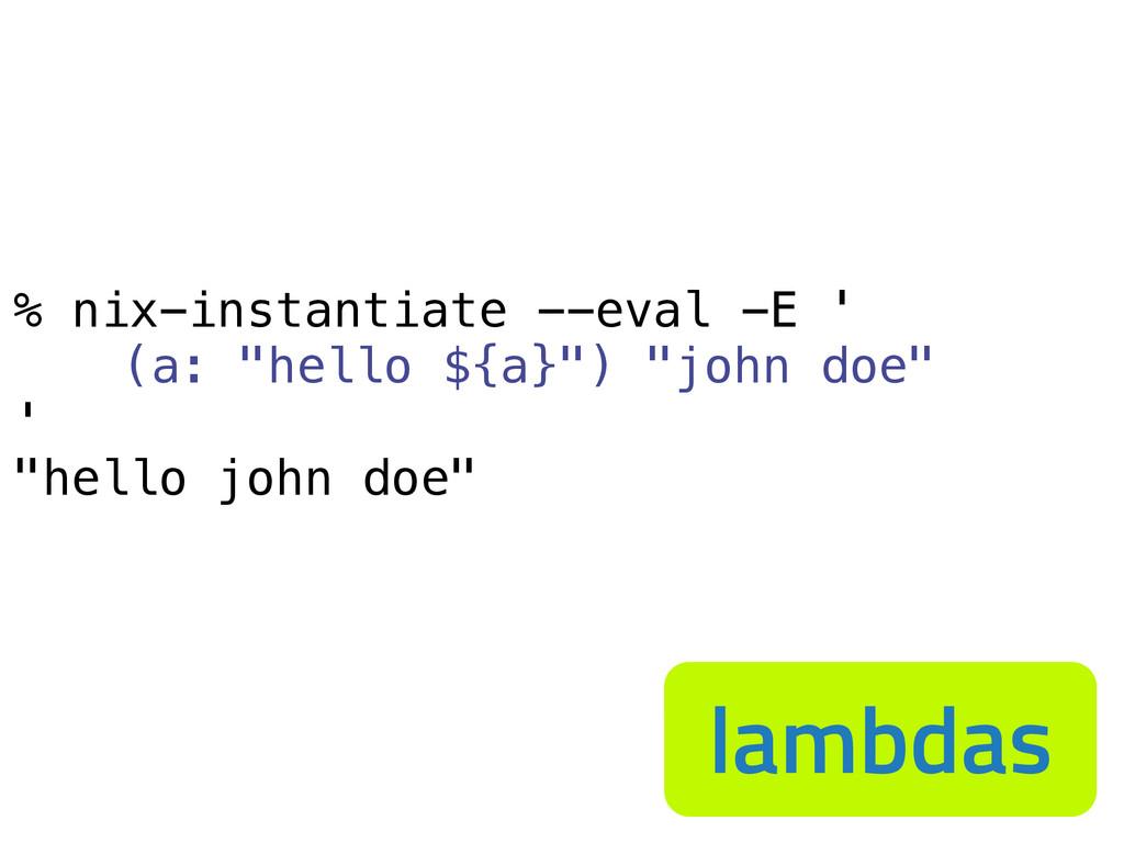 "% nix-instantiate --eval -E ' (a: ""hello ${a}"")..."