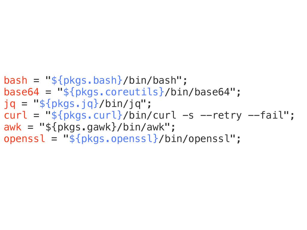 """bash = """"${pkgs.bash}/bin/bash""""; base64 = """"${pkg..."""