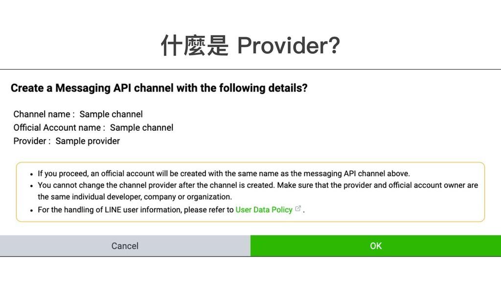 什麼是 Provider?