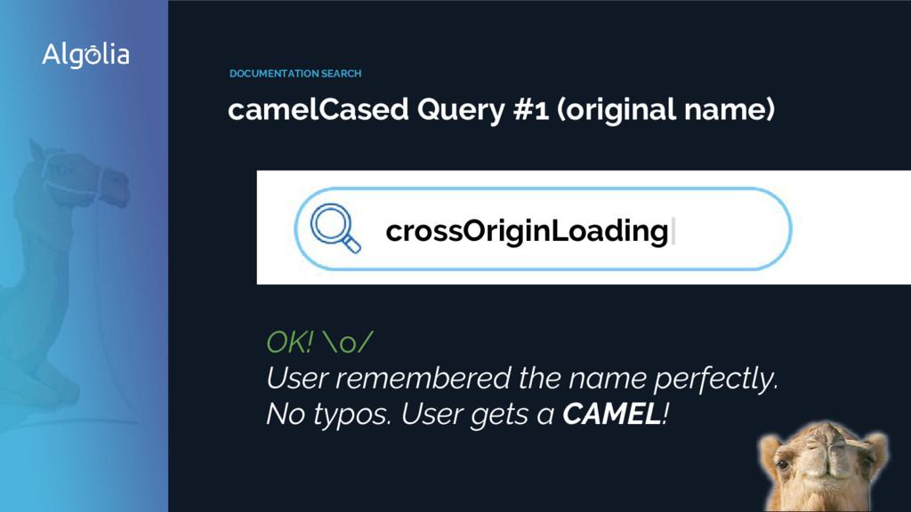 DOCUMENTATION SEARCH camelCased Query #1 (origi...