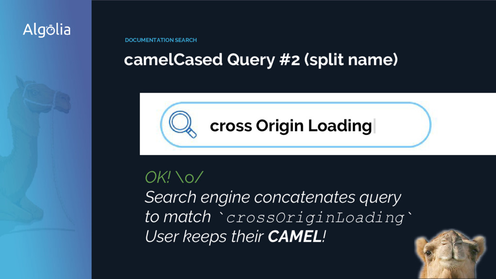 DOCUMENTATION SEARCH camelCased Query #2 (split...