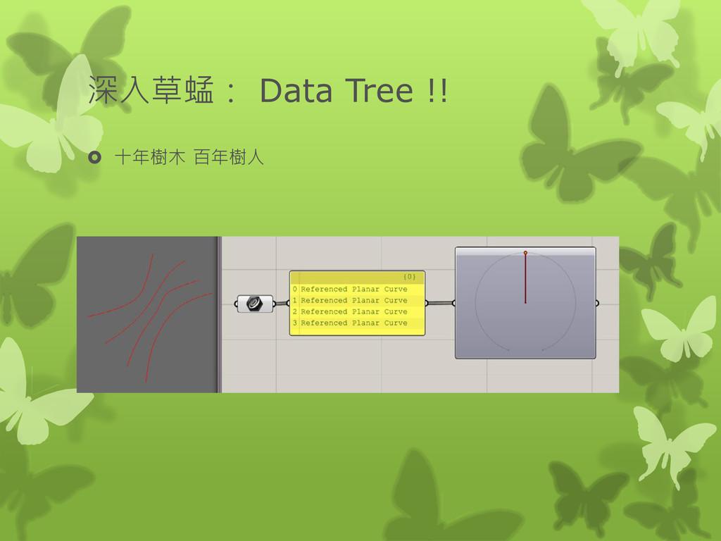 深入草蜢: Data Tree !!  十年樹木 百年樹人