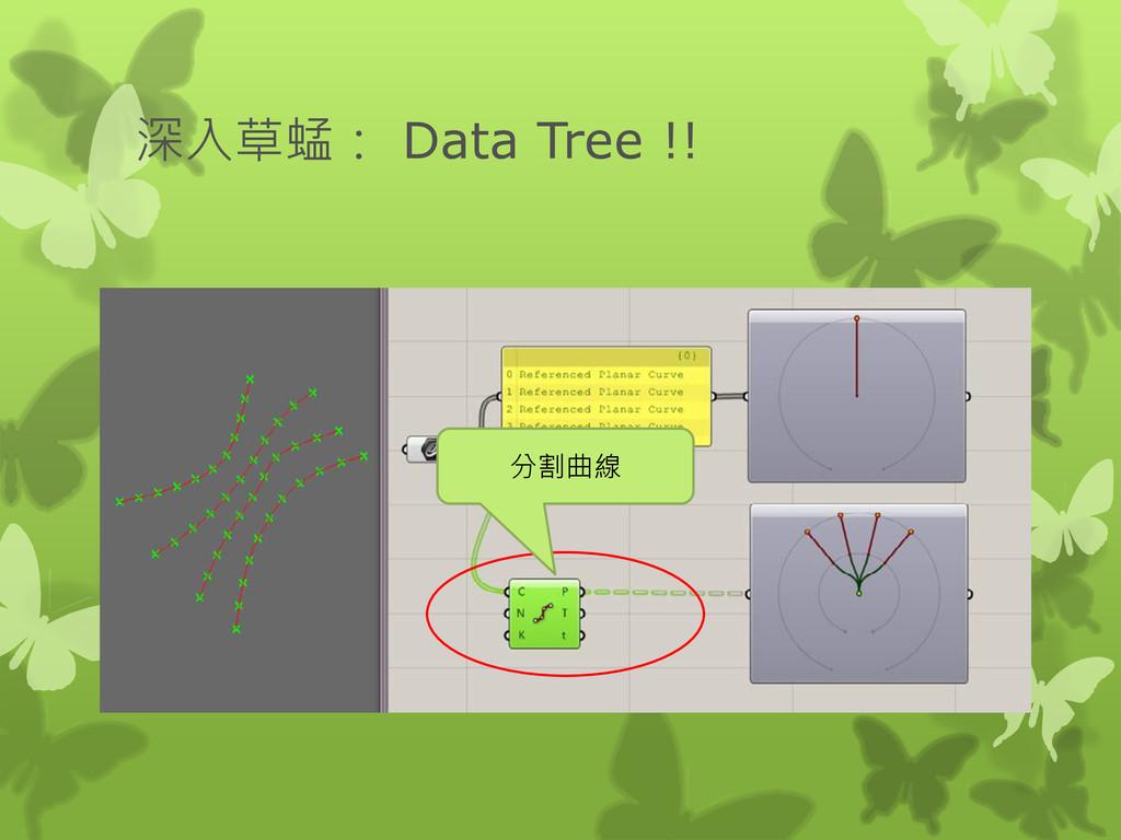深入草蜢: Data Tree !! 分割曲線