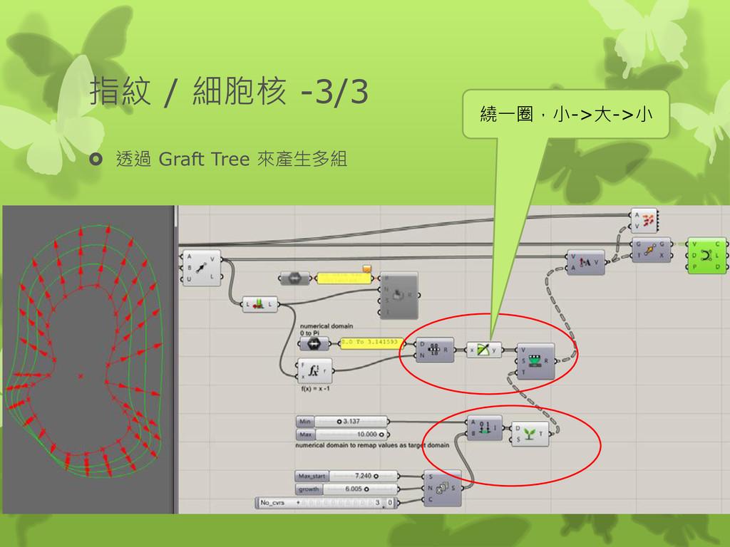 指紋 / 細胞核 -3/3  透過 Graft Tree 來產生多組 繞一圈,小->大->小