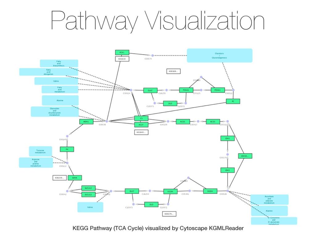Pathway Visualization KEGG Pathway (TCA Cycle) ...