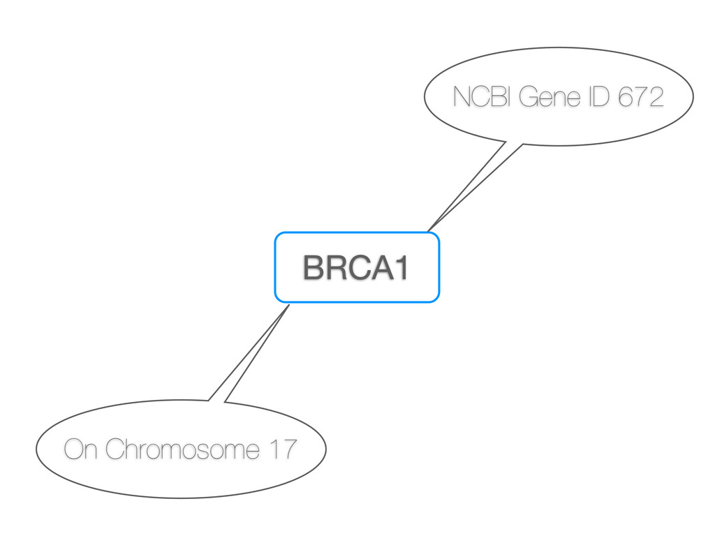 BRCA1 NCBI Gene ID 672 On Chromosome 17