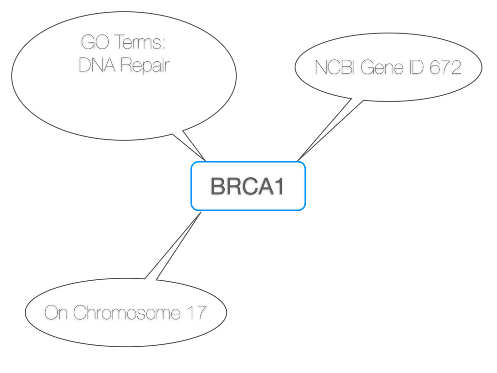 BRCA1 NCBI Gene ID 672 On Chromosome 17 GO Term...