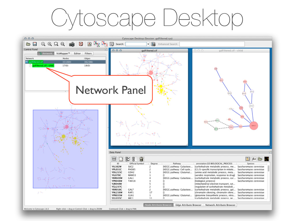 Cytoscape Desktop Network Panel