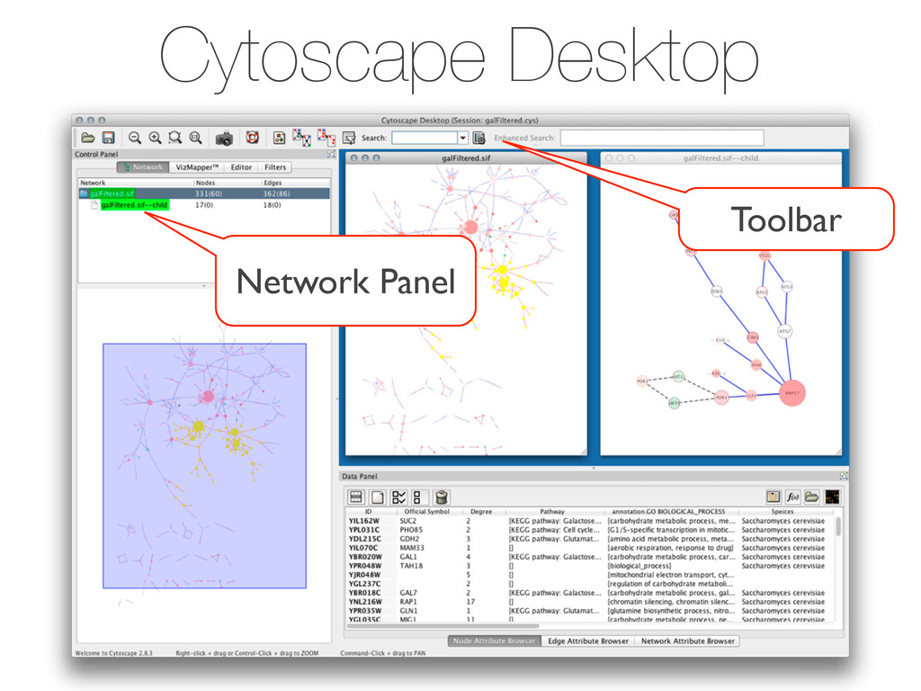 Cytoscape Desktop Toolbar Network Panel