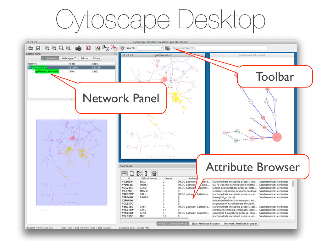 Cytoscape Desktop Toolbar Network Panel Attribu...