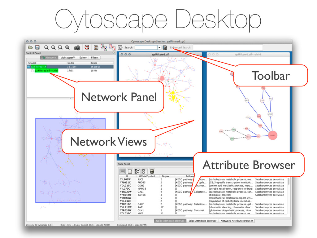Cytoscape Desktop Toolbar Network Panel Attribu...
