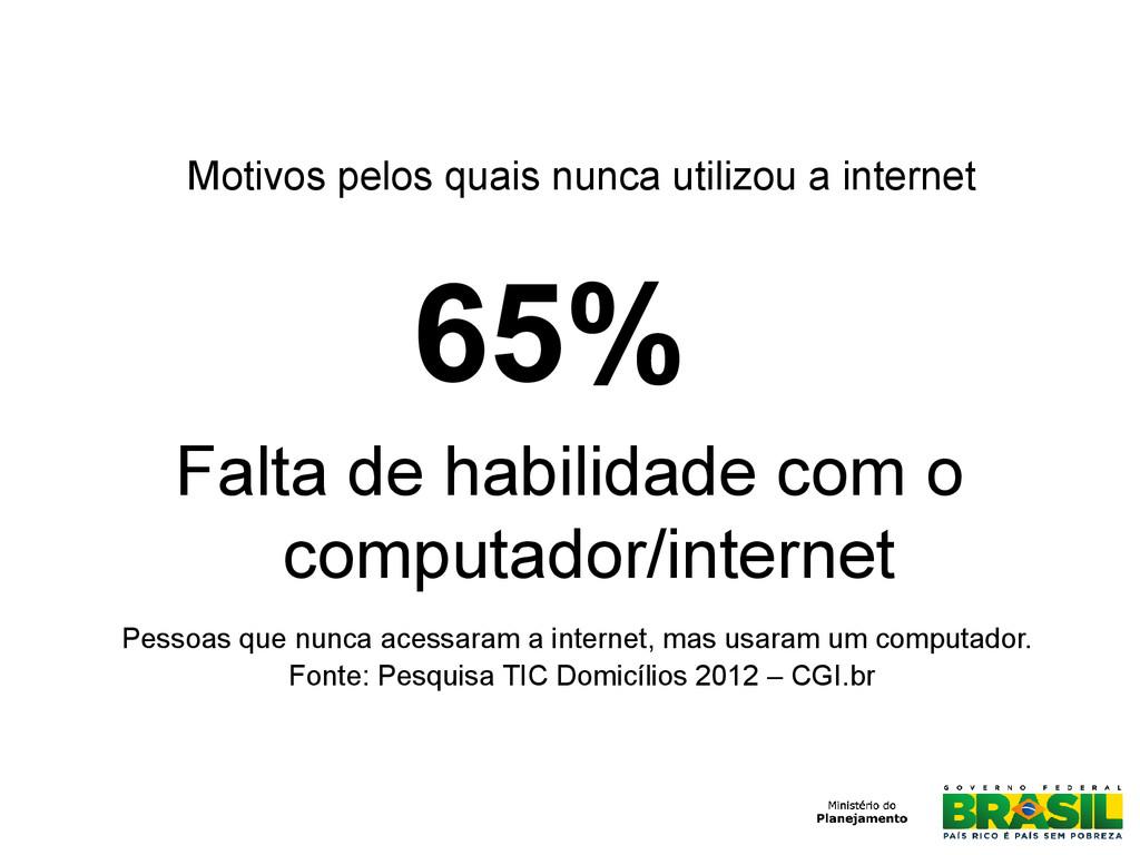 65% Falta de habilidade com o computador/intern...