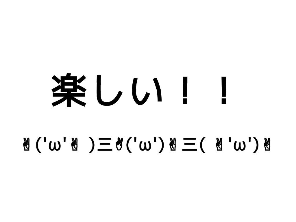 楽しい!! ✌('ω' ) ✌ 三✌('ω')✌三( 'ω') ✌ ✌