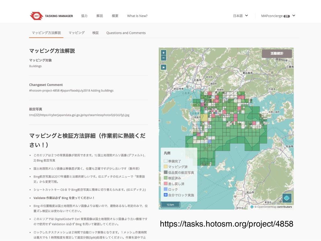 https://tasks.hotosm.org/project/4858