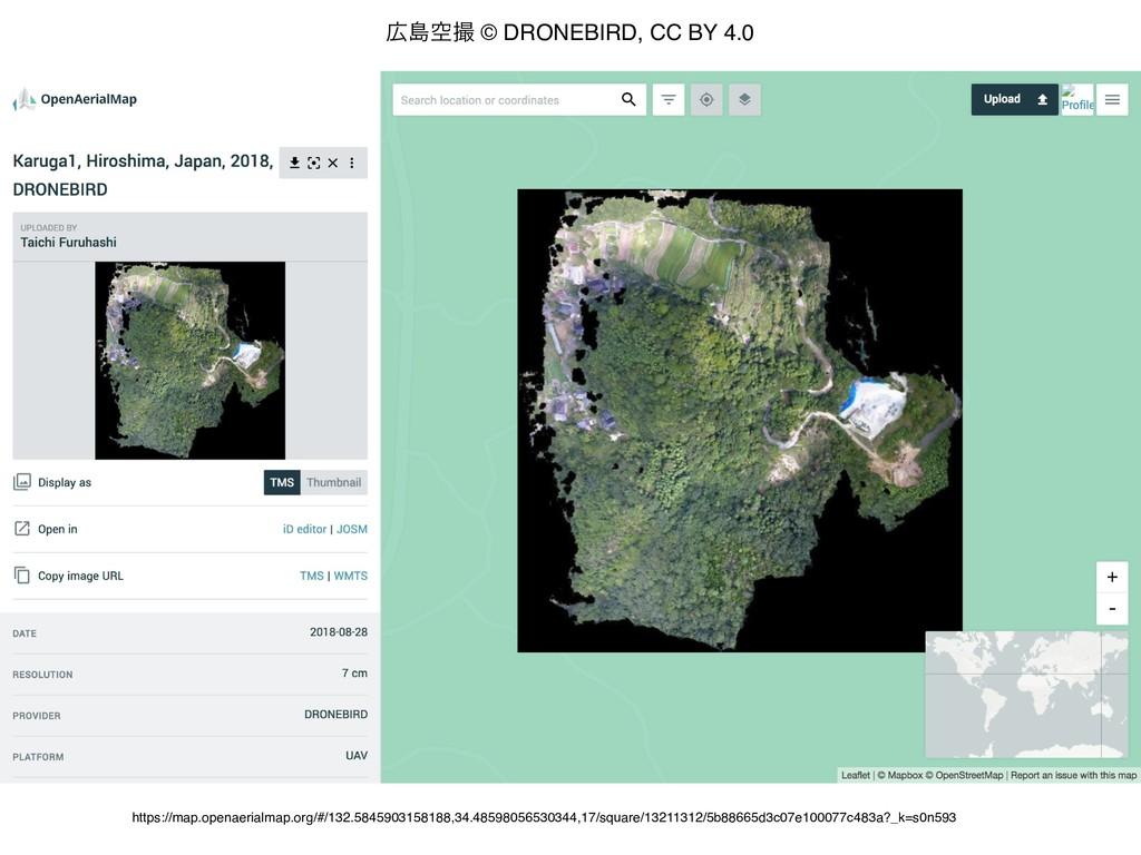 https://map.openaerialmap.org/#/132.58459031581...