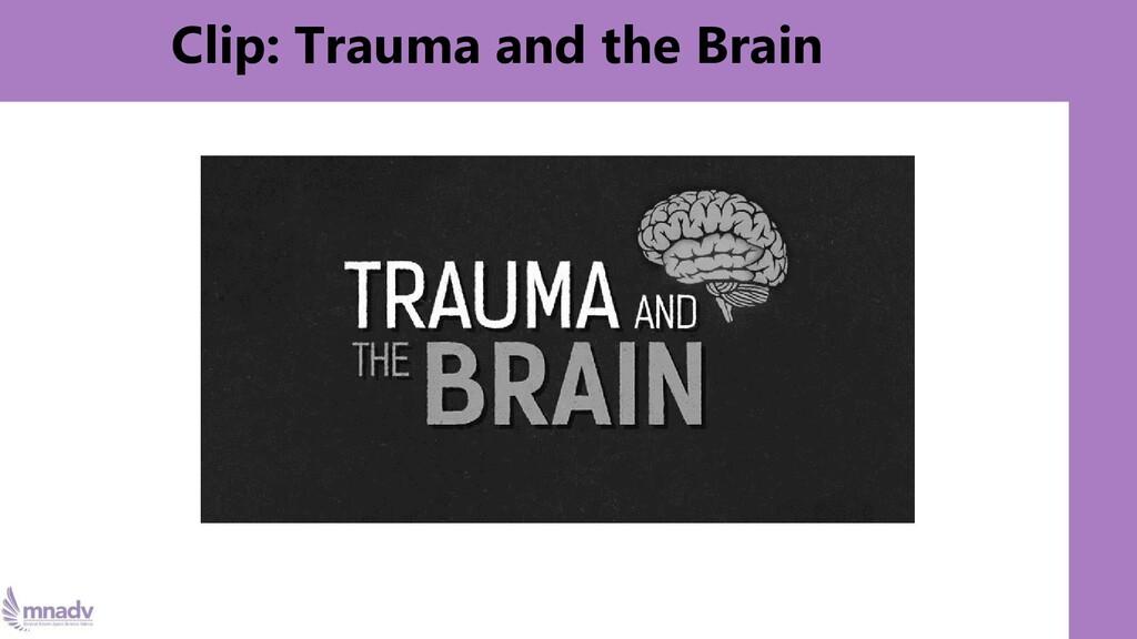 Clip: Trauma and the Brain