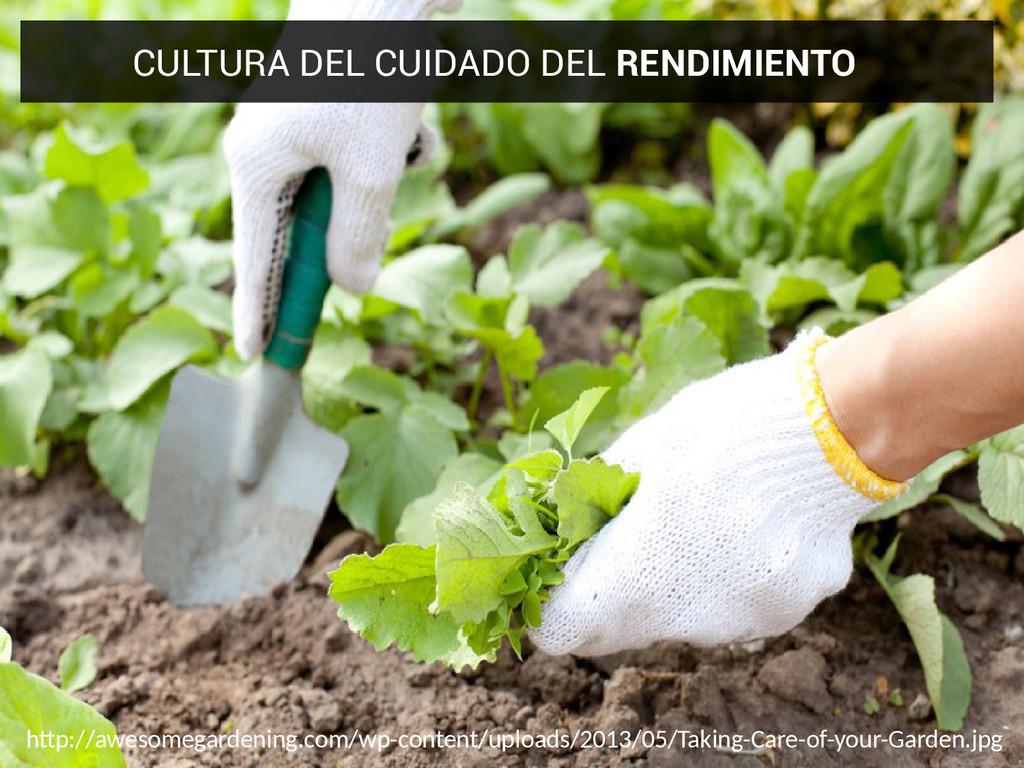 CULTURA DEL CUIDADO DEL RENDIMIENTO htp://aweso...