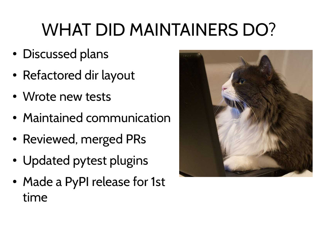 WHAT DID MAINTAINERS DO? ● Discussed plans ● Re...
