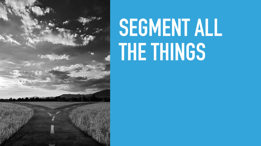 SEGMENT ALL THE THINGS