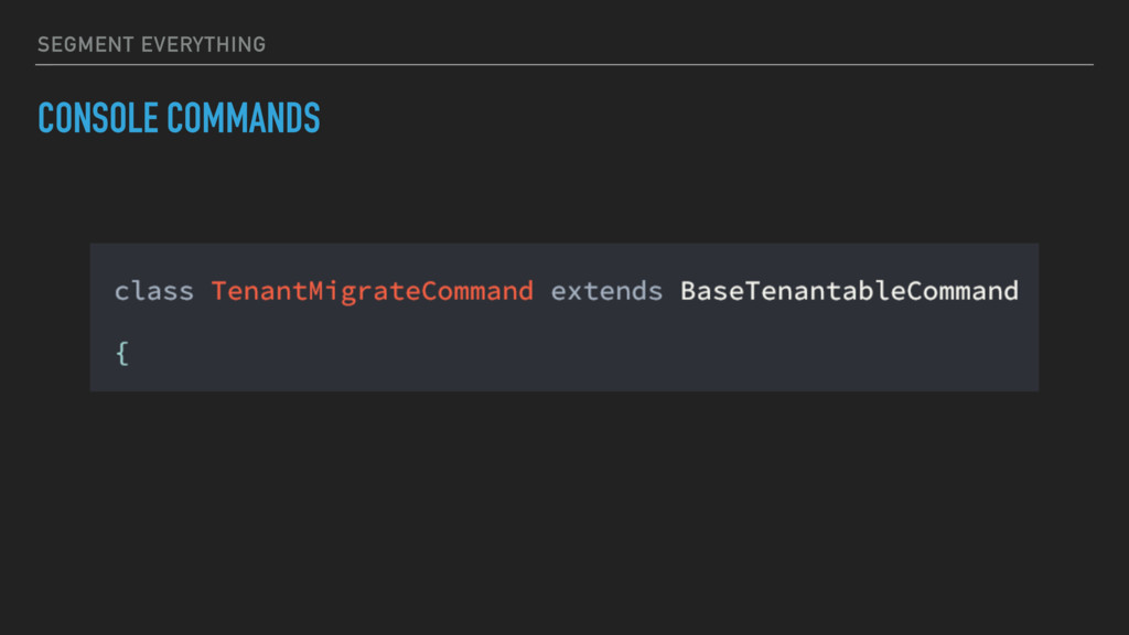 SEGMENT EVERYTHING CONSOLE COMMANDS