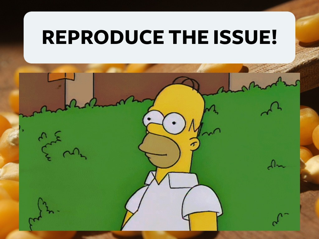 REPRODUCE THE ISSUE!