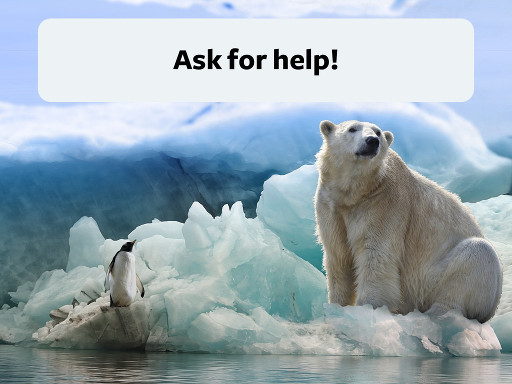 Ask for help!