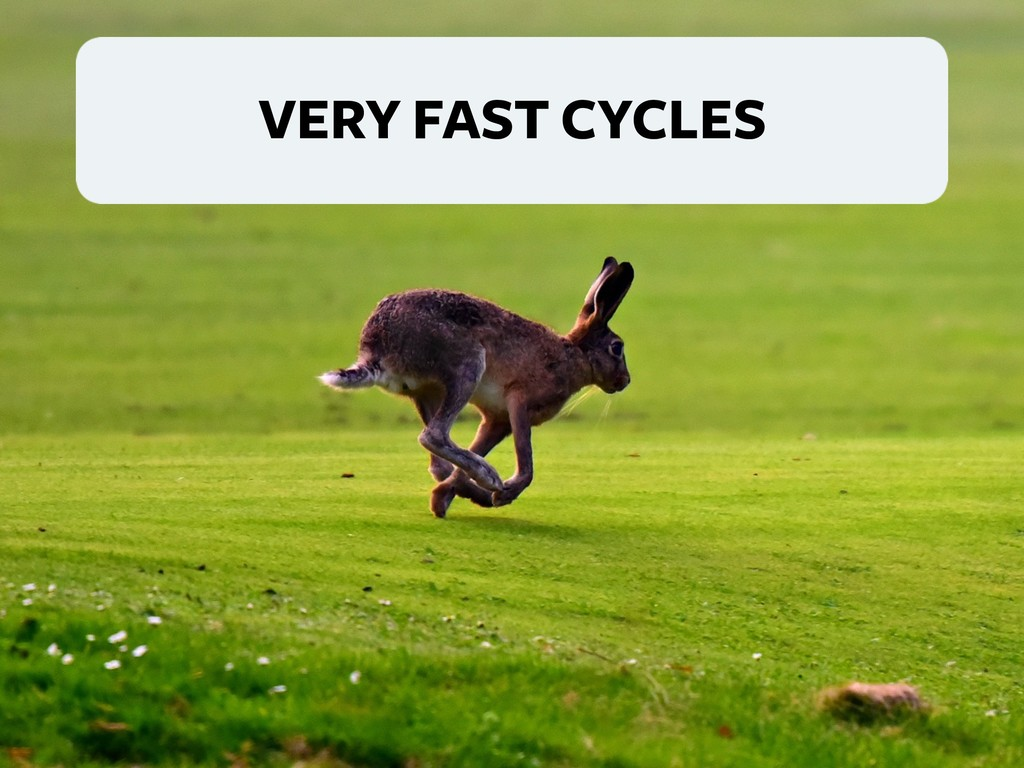 VERY FAST CYCLES