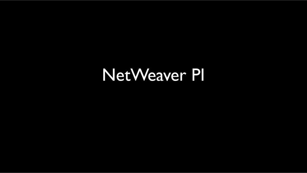 NetWeaver PI!