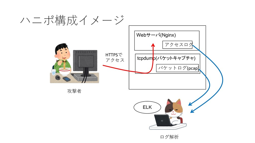 Web(Nginx) tcpdump(   ) ...