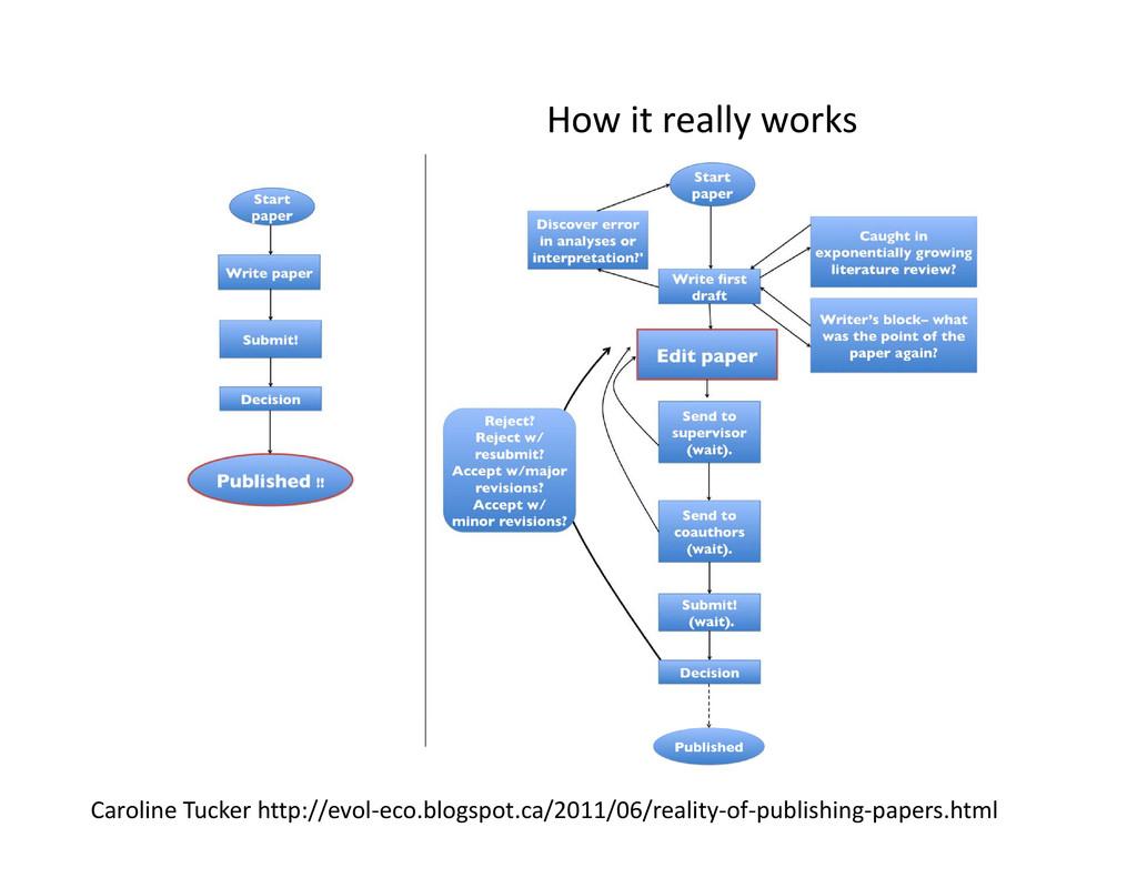 How it really works Caroline Tucker http://evol...