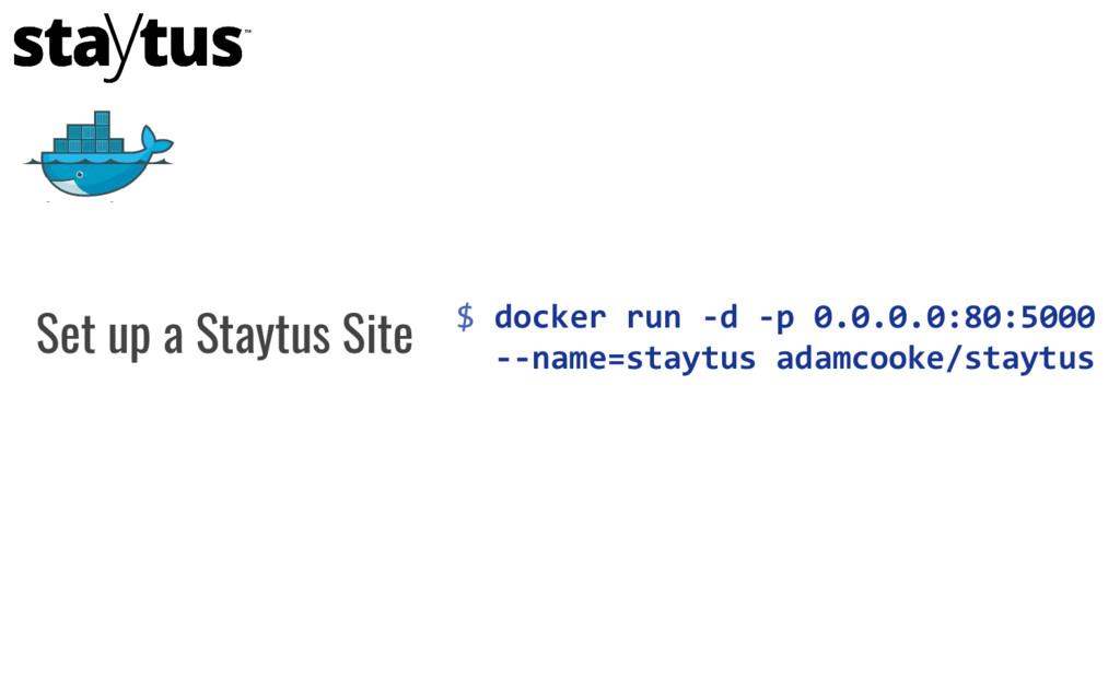 $ docker run -d -p 0.0.0.0:80:5000 --name=stayt...