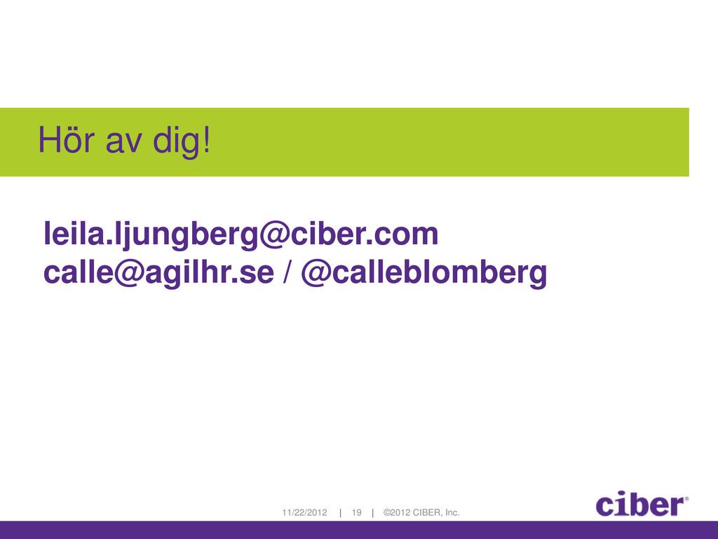11/22/2012 | 19 | ©2012 CIBER, Inc. Hör av dig!...