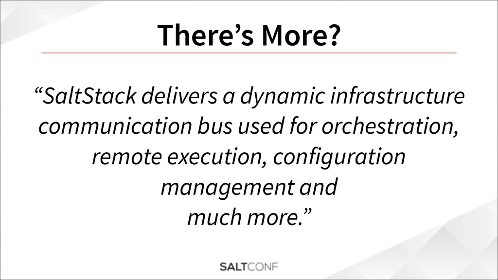 "There's More? ""SaltStack delivers a dynamic inf..."
