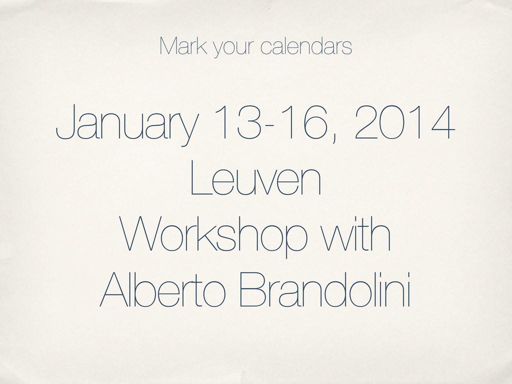 January 13-16, 2014 Leuven Workshop with Albert...