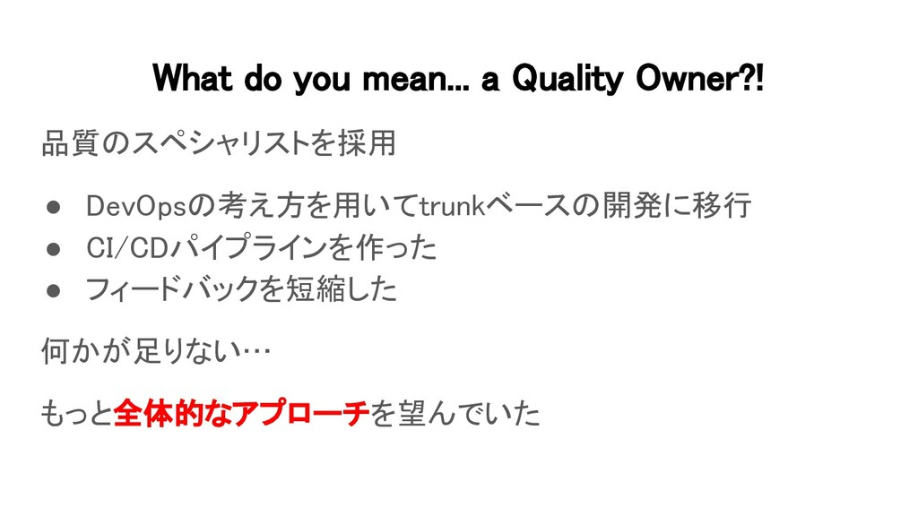 What do you mean... a Quality Owner?! 品質のスペシャリ...