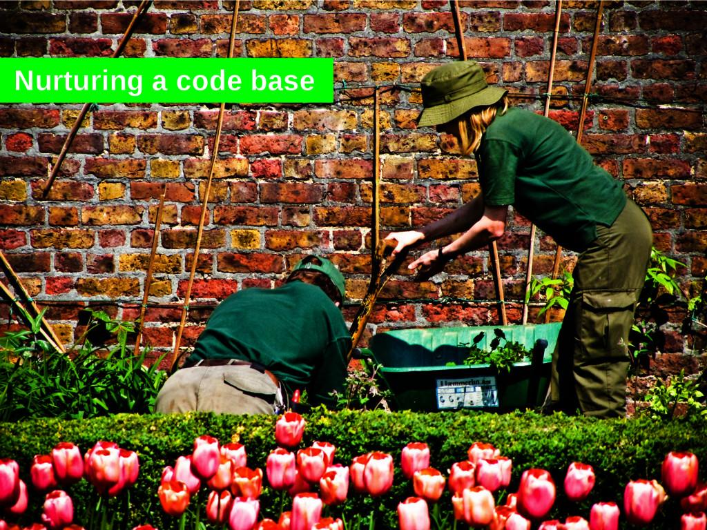 Nurturing a code base
