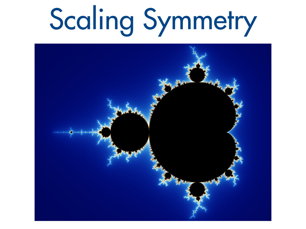 Scaling Symmetry