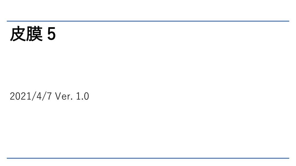 皮膜 5 2021/4/7 Ver. 1.0